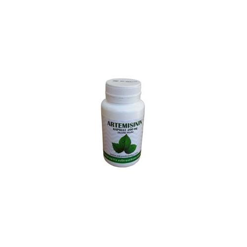 Artemisinin (slatki pelin) -prirodni preparat za lečenje kancera i malarije