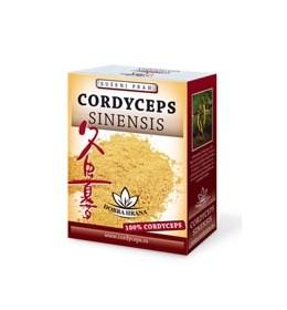 CORDYCEPS SINESIS - medicinska gljiva za jačanje mišiča, krvnih sudova, regulaciju nivoa holesterola, protiv hroničnog umora, depresije i stresa, sa protivtmornim delovanjem