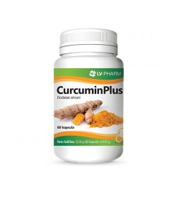 CurcuminPlus protiv ulcera, bolova i zapaljenja